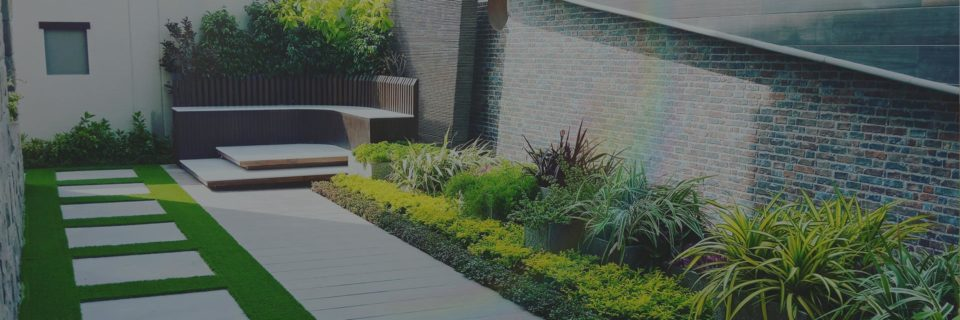 Professional landscaping that is also pocket friendly