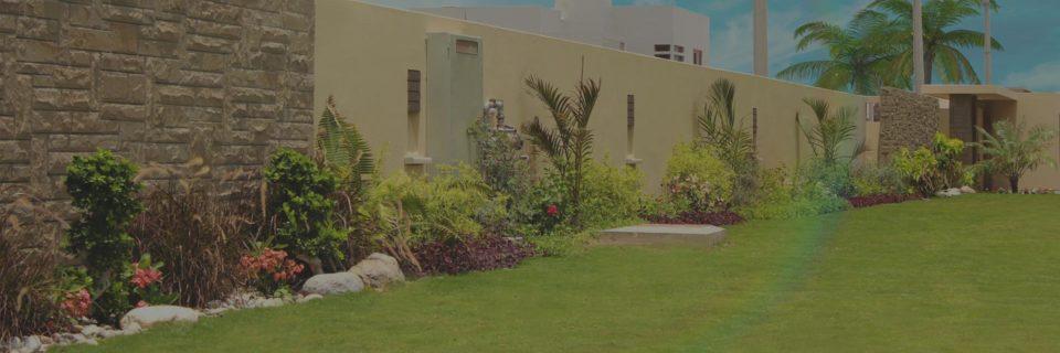 Breathtaking garden designing at your doorstep